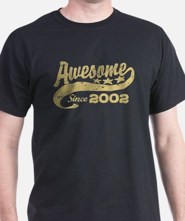Awesome Since 2002 T-Shirt