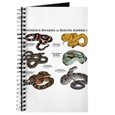 Venomous Snakes of South America Journal