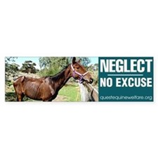 Neglect - No Excuse Bumper Bumper Sticker