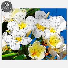 Plumeria Puzzle