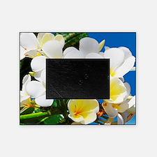 Plumeria Picture Frame