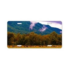 Cades Cove Horses Aluminum License Plate
