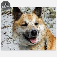 IcelandicSheepdog002 Puzzle