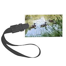 Ducks on a Reflecting Pond Luggage Tag