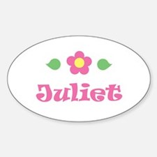 "Pink Daisy - ""Juliet"" Oval Decal"