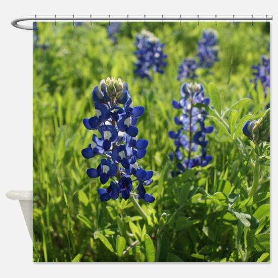 Texas Bluebonnets - square Shower Curtain