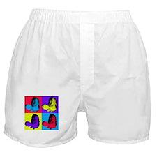 Pop Art Grouper Boxer Shorts