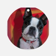 Ruthie the Boston Terrier Round Ornament