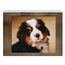 2014 North Coast Bernese Mountain Dog Calendar