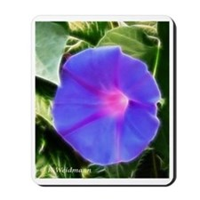 Morning Glory Mousepad