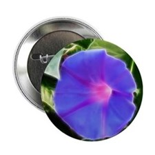 "Morning Glory 2.25"" Button"