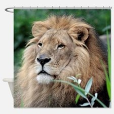 Lion010 Shower Curtain