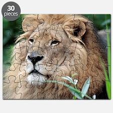 Lion010 Puzzle