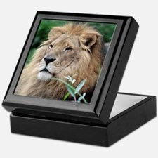 Lion010 Keepsake Box