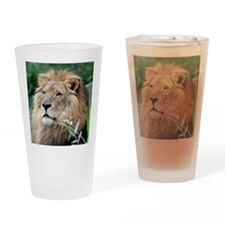 Lion010 Drinking Glass