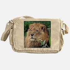 Lion010 Messenger Bag