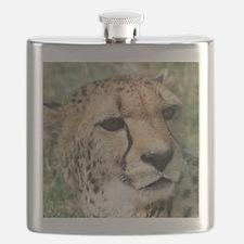 Cheetah006 Flask