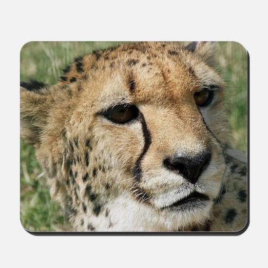 Cheetah006 Mousepad