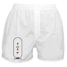"""Erik in Hieroglyphics """"Color"""" Boxer Shorts"""