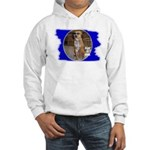 PLAY IT COOL (PIMP DAWG) Hooded Sweatshirt