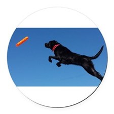 I can fly! Round Car Magnet