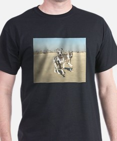 NN Beach Boys T-Shirt