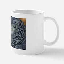 African Gray Mug
