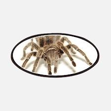 Tarantula Patches
