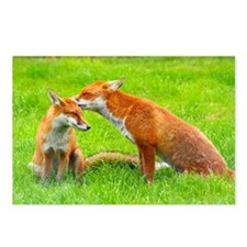 fox friends Postcards (Package of 8)