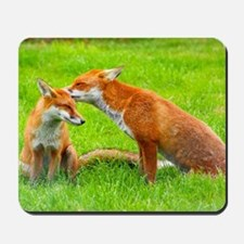 fox friends Mousepad