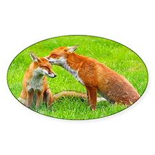fox friends Decal
