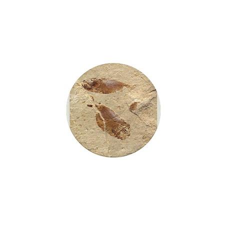 Fish Fossil Mini Button