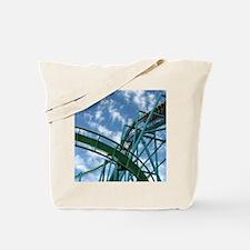 Cedar Point Raptor Roller Coaster Tote Bag