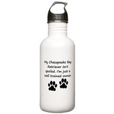 Well Trained Chesapeake Bay Retriever Owner Water