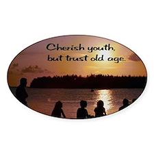 Cherish Youth Decal