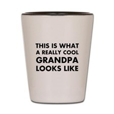THIS IS WHAT  A REALLY COOL GRANDPA LOO Shot Glass