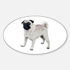 Cute pug Decal