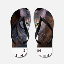 Cat Let The Dogs Out Flip Flops