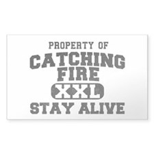 XXL Catching Fire Decal