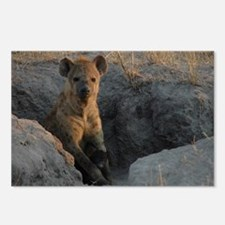 Hyena and Cub Postcards (Package of 8)