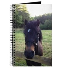 Sooty Journal