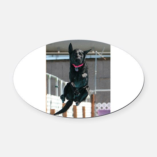 Jumping off the dock Oval Car Magnet