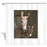 Donkey Shower Curtains