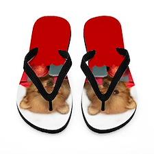 Christmas pomeranian puppy Flip Flops