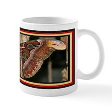 Funny Animal habitats Mug