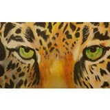 Jaguar eyes Wall Decals