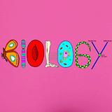 Biology Underwear & Panties