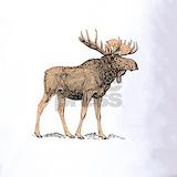 Moose Polos