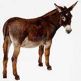 Donkey Underwear & Panties