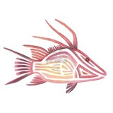 Hogfish Wall Decals